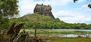 sigiriya elephant safari day tour
